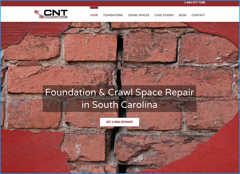 Website Design for CNT Foundations
